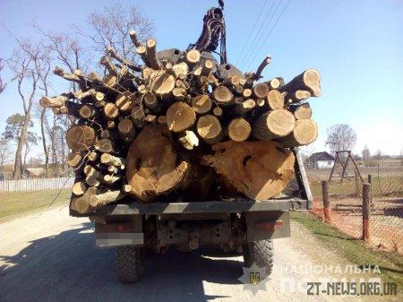 В Ємільчинському районі поліцейські затримали вантажівку з деревиною без документів
