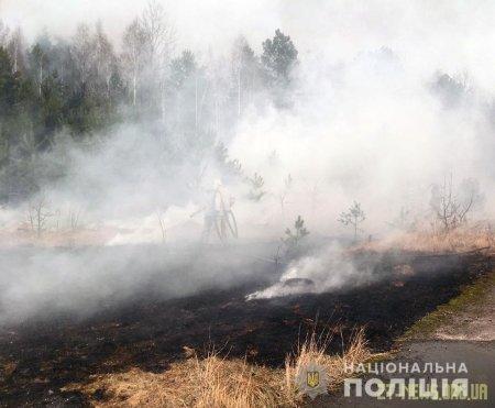 Поліція з'ясовує обставини підпалу трави у Народицькому районі