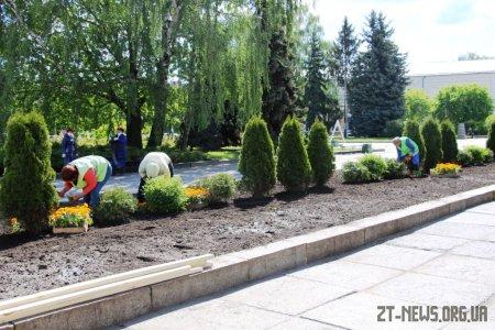 У Житомирі триває весняне озеленення