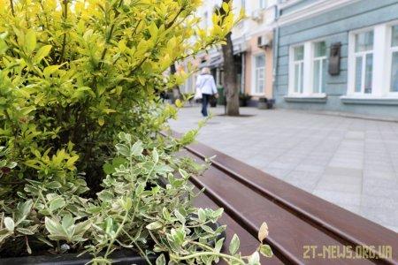 На Михайлівську повернули лавки з декоративними рослинами