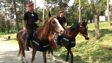 У житомирському Гідропарку на патрулювання вийшов кінний патруль