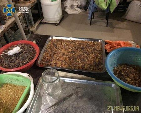 На Житомирщині в дохід держави конфісковано більше 9 тонн бурштину
