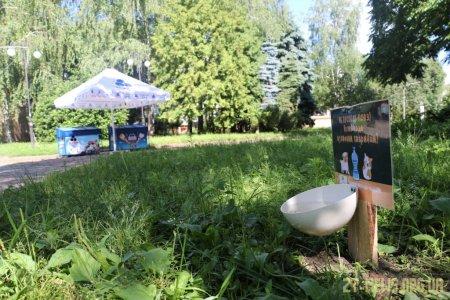 У Житомирі встановлюють поїлки для вуличних тварин