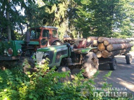 В Олевському районі поліцейські та лісники затримали трактори з краденою деревиною