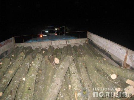 Поліцейські Житомирщини продовжують рейди з протидії розкраданню лісу
