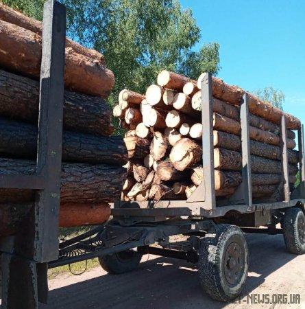 На Житомирщині прикордонники виявили УРАЛ з краденою деревиною