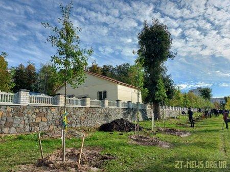 У Житомирі висадили 28 дубів в пам'ять про загиблих військових