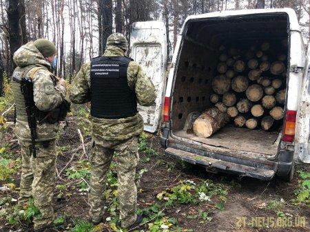 Прикордонники Житомирського загону завадили крадіжці  та незаконному перевезенню лісу