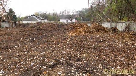 """У Житомирі """"Зеленбуд"""" щорічно переробляє на компост від 30 до 50 тонн опалого листя"""