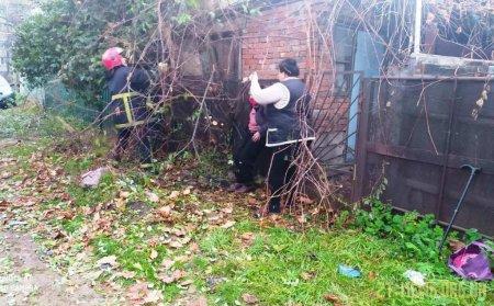 В Коростені рятувальники вивільнили жінку, яка застрягла на паркані між деревами