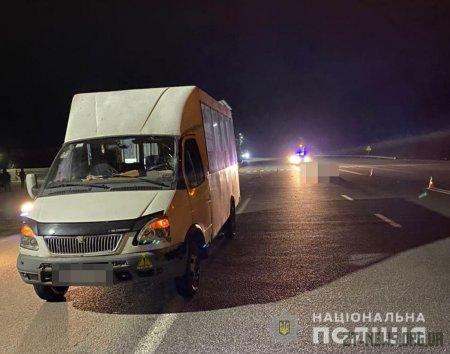Поблизу Житомира маршрутка насмерть збила чоловіка