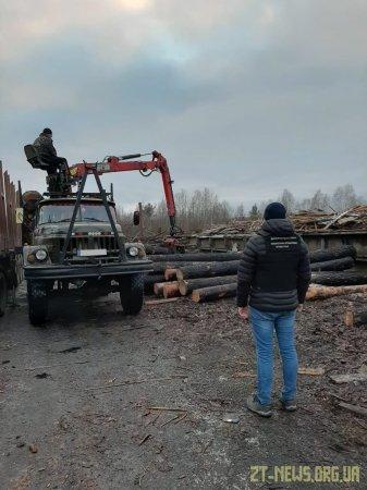 Під час обшуків на пилорамі у прикордонні Житомирщини виявили деревину невстановленого походження