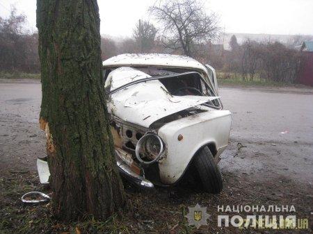 """У Бердичеві """"копійка"""" влетіла у дерево, є травмований"""