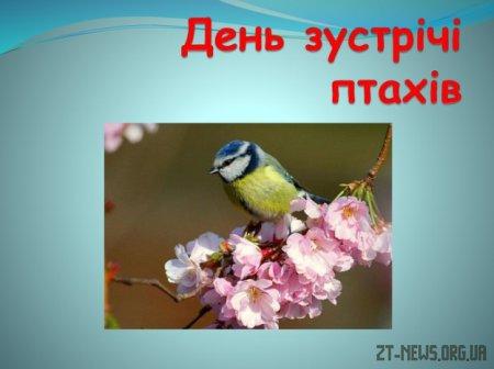 День зустрічі птахів