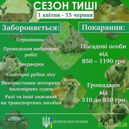"""У лісах Житомирщини з 1 квітня буде введено """"сезон тиші"""""""