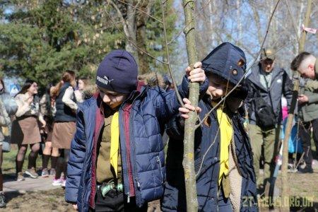 У Житомирі висадили 1000 нових дерев за день