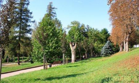 У Житомирі з'явиться реєстр зелених зон та насаджень