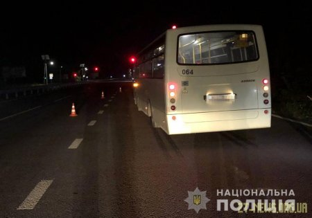 Поблизу Житомира маршрутка збила насмерть чоловіка