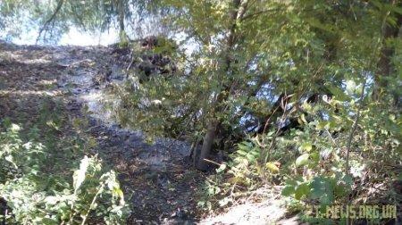 У Житомирі водоканал знову злив нечистоти в річку