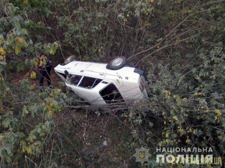 Викрадений в Овручі автомобіль знайшли у кюветі неподалік